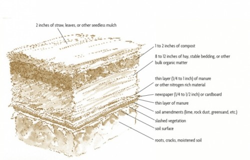 Bomb-Proof Sheet Mulch